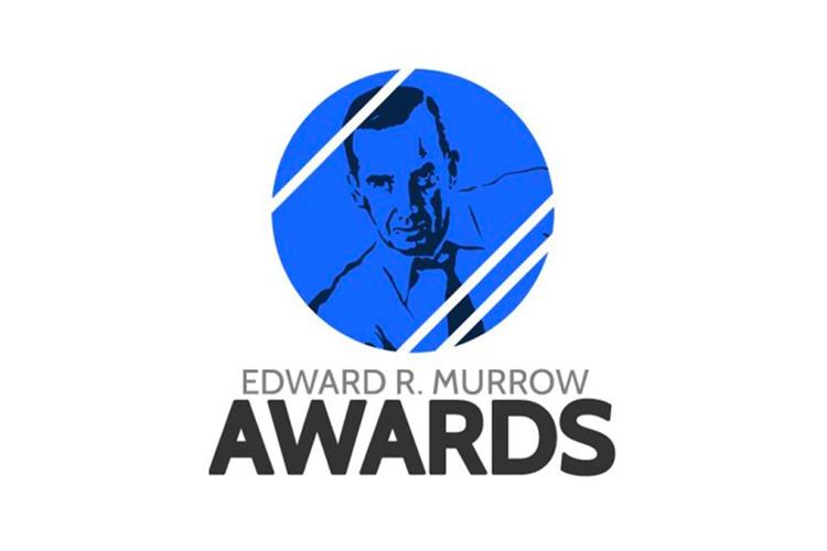 erm award logo